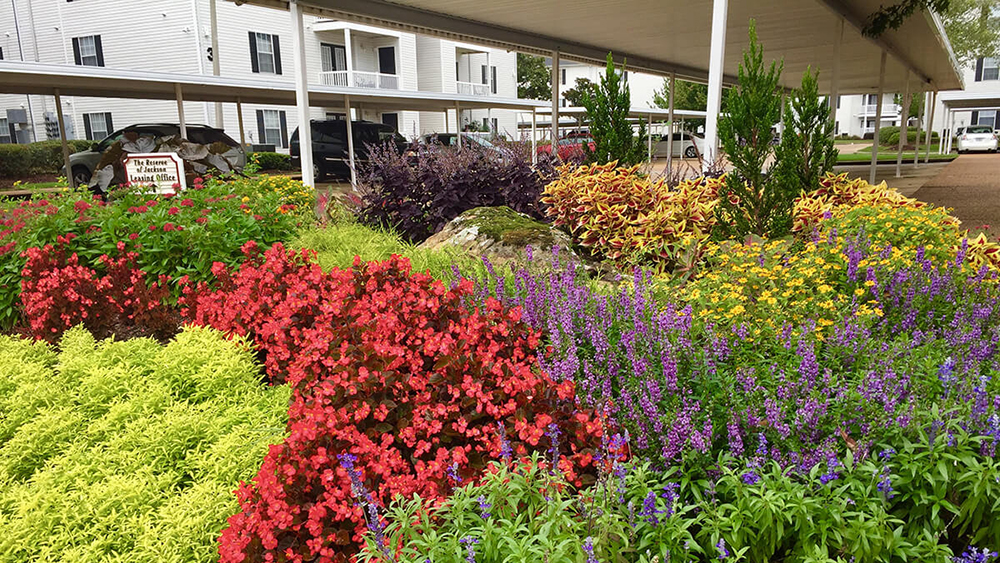 colorful flowerbed at apartment complex