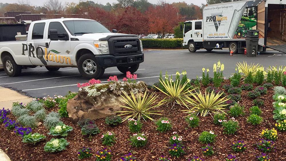 Flowerbed with annual flowers, Pro-Lawn Landscape and Maintenance trucks in background