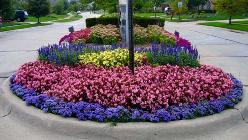 rounded flowerbed with purple, pink and yellow flowers